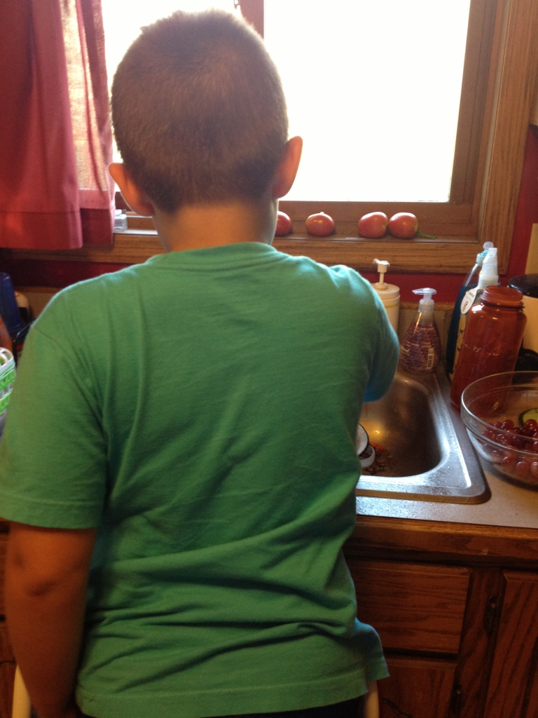 This is Punky helping with the grapes.   He couldn't reach the sink, so the step stool came out...