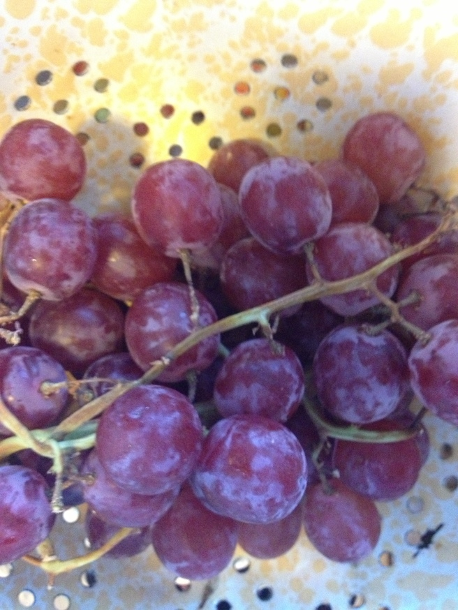 See that nasty waxy stuff on the grapes?  Ick!
